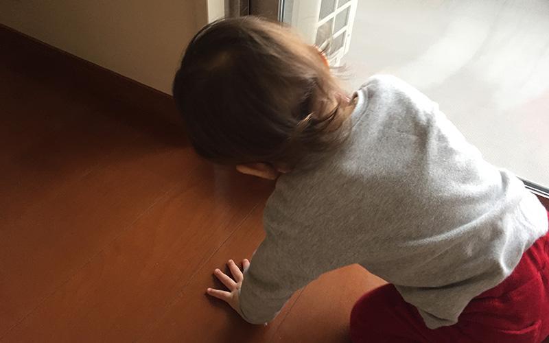 写真:じょーくんが手をついてハンディ掃除機で掃除をしている様子