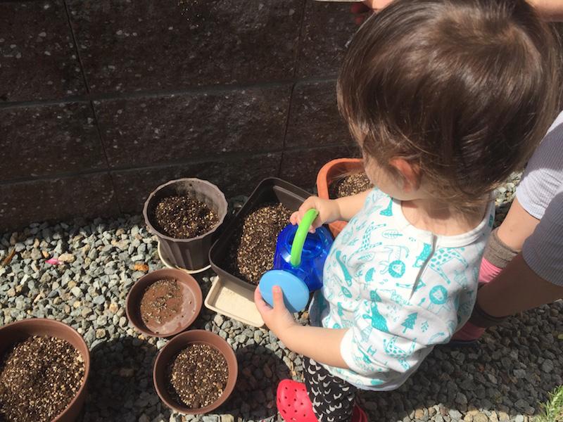写真:家庭菜園の様子(ジョウロを持っているじょーくん)
