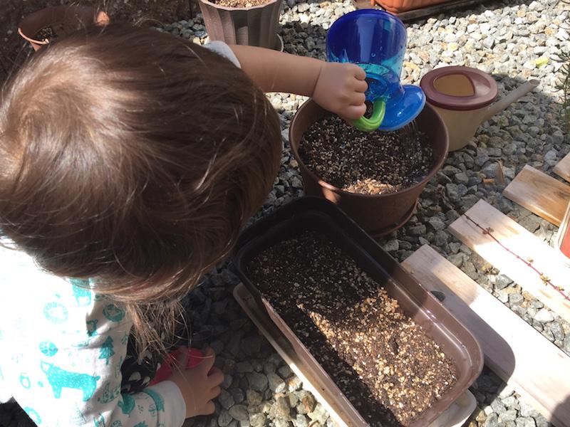 写真:家庭菜園の様子(ジョウロを使って水遣りをしている様子)