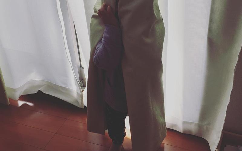 写真:じょーくんのかくれんぼ
