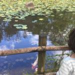 じょーくんと秘密の池