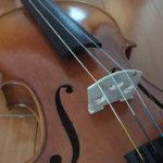 バイオリンはじめたよ〜