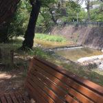 木漏れ日のベンチで